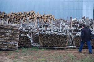 Стандартные-правила-учета-древесины1-300x200